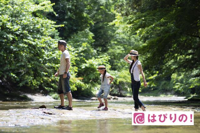 【8月10日〜15日】夏期休業のお知らせ